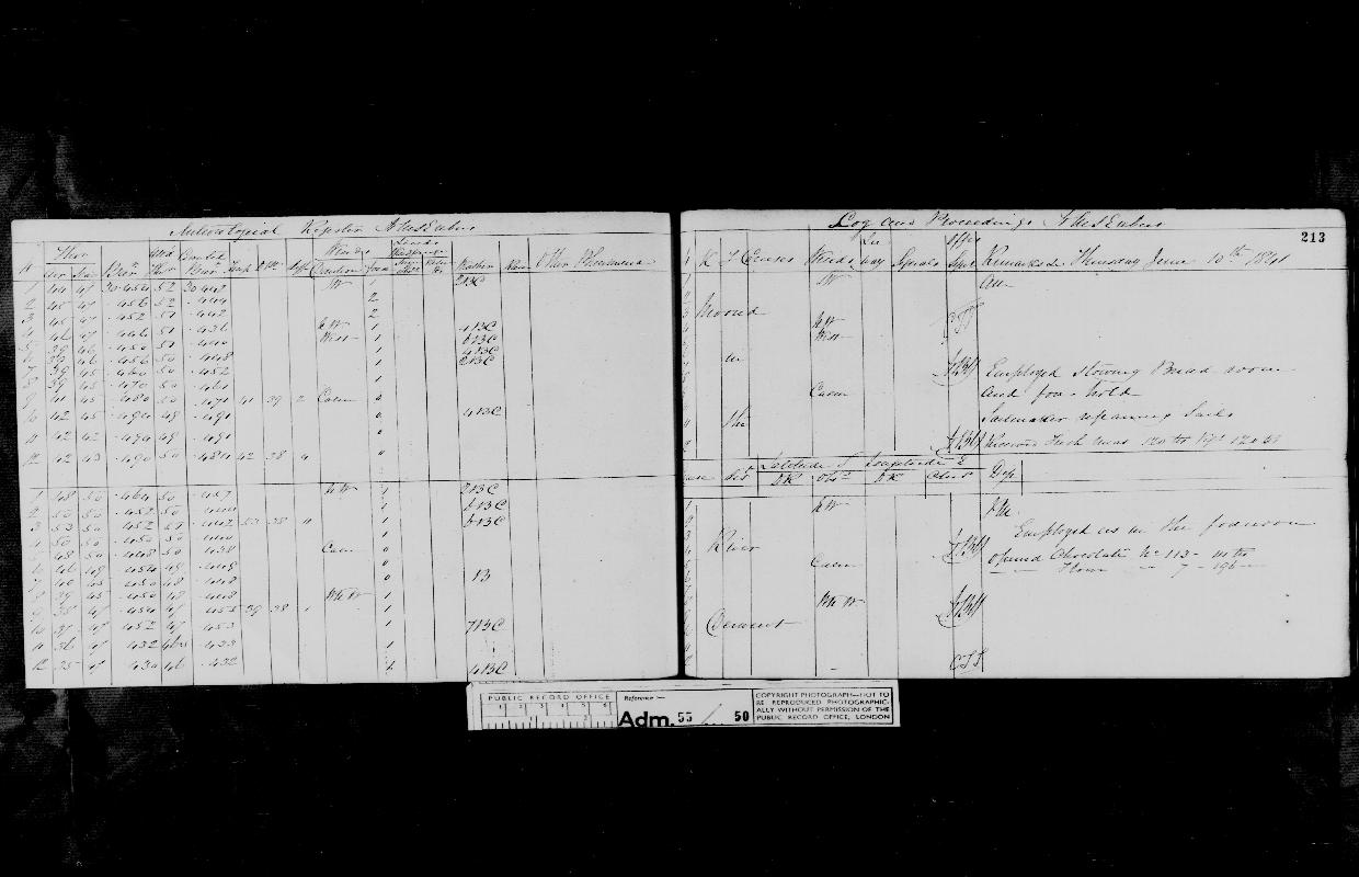 Image of page from logbook http://data.ceda.ac.uk/badc/corral/images/adm55_medium/log050/med_adm55_log050_page197.jpg