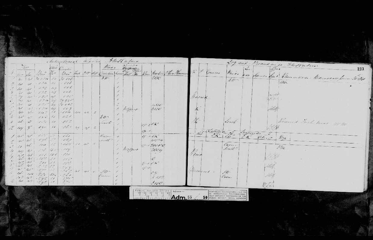 Image of page from logbook http://data.ceda.ac.uk/badc/corral/images/adm55_medium/log050/med_adm55_log050_page218.jpg