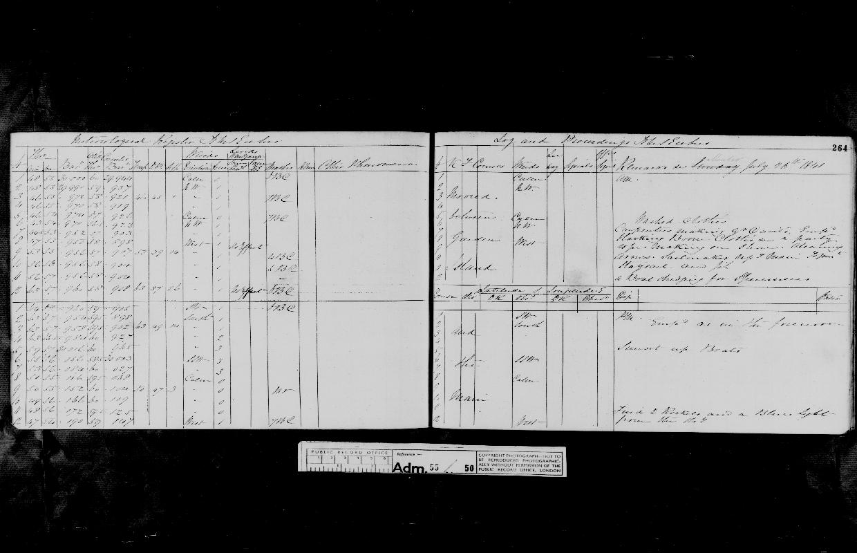 Image of page from logbook http://data.ceda.ac.uk/badc/corral/images/adm55_medium/log050/med_adm55_log050_page250.jpg