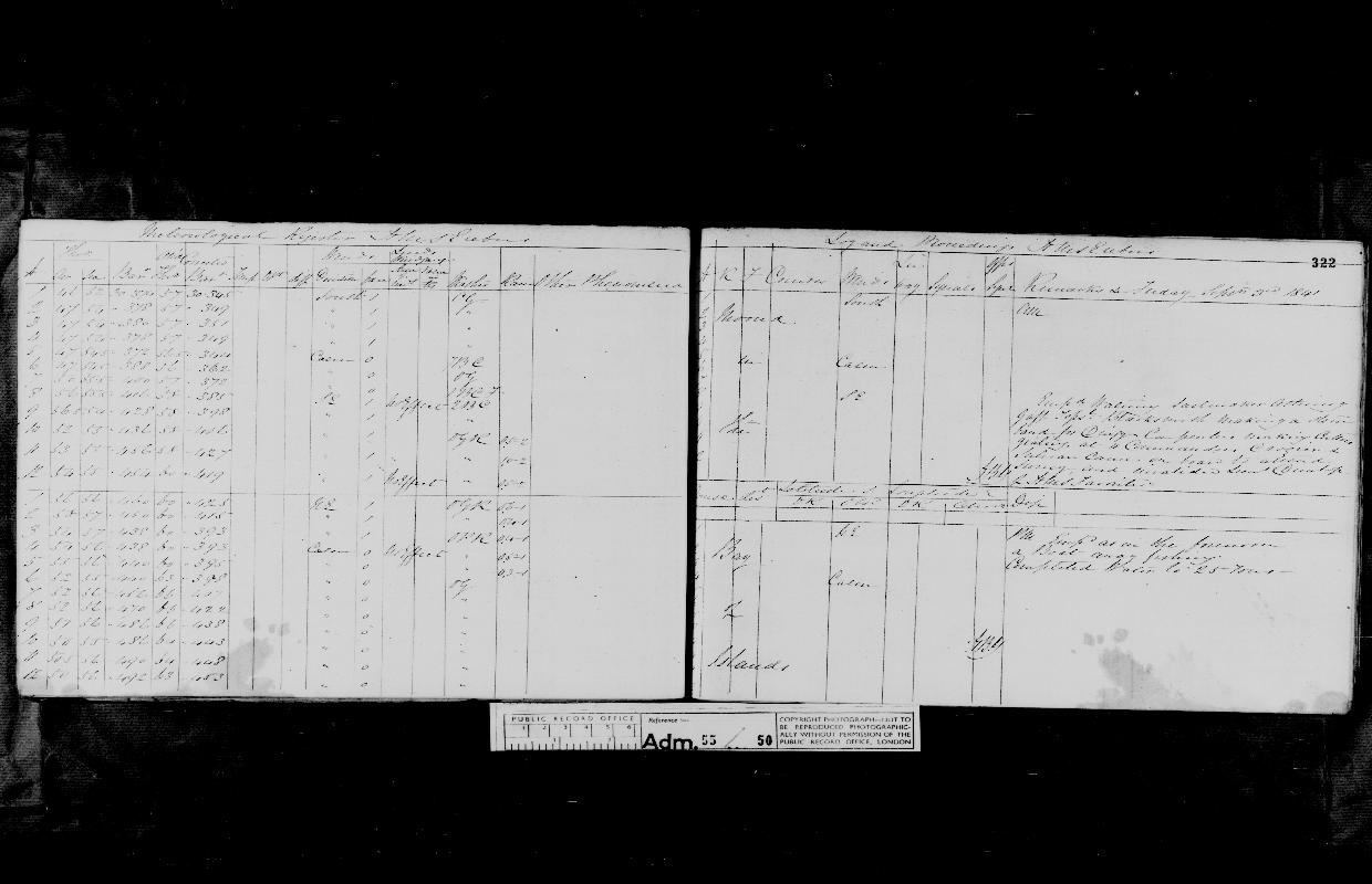 Image of page from logbook http://data.ceda.ac.uk/badc/corral/images/adm55_medium/log050/med_adm55_log050_page300.jpg